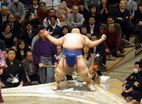 この画像は、サイトの記事「大相撲 琴奨菊 ネットや口コミで話題 YouTube注目無料視聴動画ご紹介!」のイメージ写真画像として利用しています。