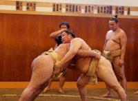 この画像は、サイトの記事「相撲 稽古 ネットや口コミで話題 YouTube注目無料視聴動画ご紹介!」のイメージ写真画像として利用しています。
