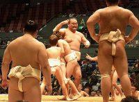 この画像は、サイトの記事「相撲 子供 ネットや口コミで話題 YouTube注目無料視聴動画ご紹介!」のイメージ写真画像として利用しています。