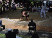 この画像は、サイトの記事「相撲 小学生 ネットや口コミで話題 YouTube注目無料視聴動画ご紹介!」のイメージ写真画像として利用しています。