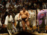この画像は、サイトの記事「大相撲 栃煌山 ネットや口コミで話題 YouTube注目無料視聴動画ご紹介!」のイメージ写真画像として利用しています。