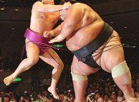 この画像は、サイトの記事「大相撲 舞の海 ネットや口コミで話題 YouTube注目無料視聴動画ご紹介!」のイメージ写真画像として利用しています。