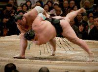 この画像は、サイトの記事「大相撲 豊ノ島 ネットや口コミで話題 YouTube注目無料視聴動画ご紹介!」のイメージ写真画像として利用しています。