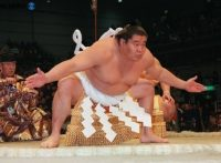 この画像は、サイトの記事「大相撲 若乃花 ネットや口コミで話題 YouTube注目無料視聴動画ご紹介!」のイメージ写真画像として利用しています。