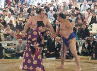 この画像は、サイトの記事「大相撲トーナメント 2016 第40回大会 ネットや口コミで話題 YouTube注目無料視聴動画ご紹介!」のイメージ写真画像として利用しています。