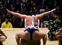 この画像は、サイトの記事「大相撲 春場所 2017 ネットや口コミで話題 YouTube注目無料視聴動画ご紹介!」のイメージ写真画像として利用しています。