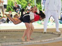 この画像は、サイトの記事「わんぱく相撲 女子 ネットや口コミで話題 YouTube注目無料視聴動画ご紹介!」のイメージ写真画像として利用しています。