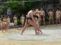 この画像は、サイトの記事「わんぱく相撲 練習 ネットや口コミで話題 YouTube注目無料視聴動画ご紹介!」のイメージ写真画像として利用しています。