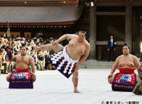 この画像は、サイトの記事「大相撲 初場所 ネットや口コミで話題 YouTube注目無料視聴動画ご紹介!」のイメージ写真画像として利用しています。