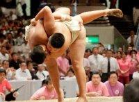 このイメージ画像は「わんぱく相撲全国大会 公式 注目の動画まとめ集ビデオギャラリー&YouTube検索キーワードランキング動画人気ベスト5」記事のアイキャッチ画像として利用しています。